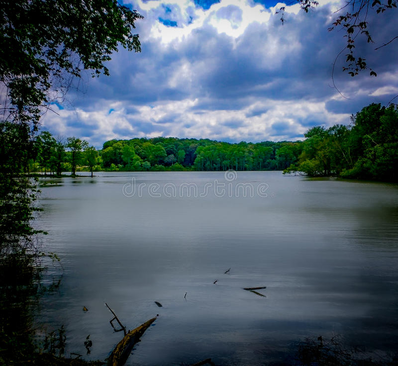 Spring River View. River in the Carolinas royalty free stock image