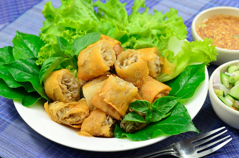Spring roll traditional. Fried appetizer Vietnam cuisine royalty free stock images