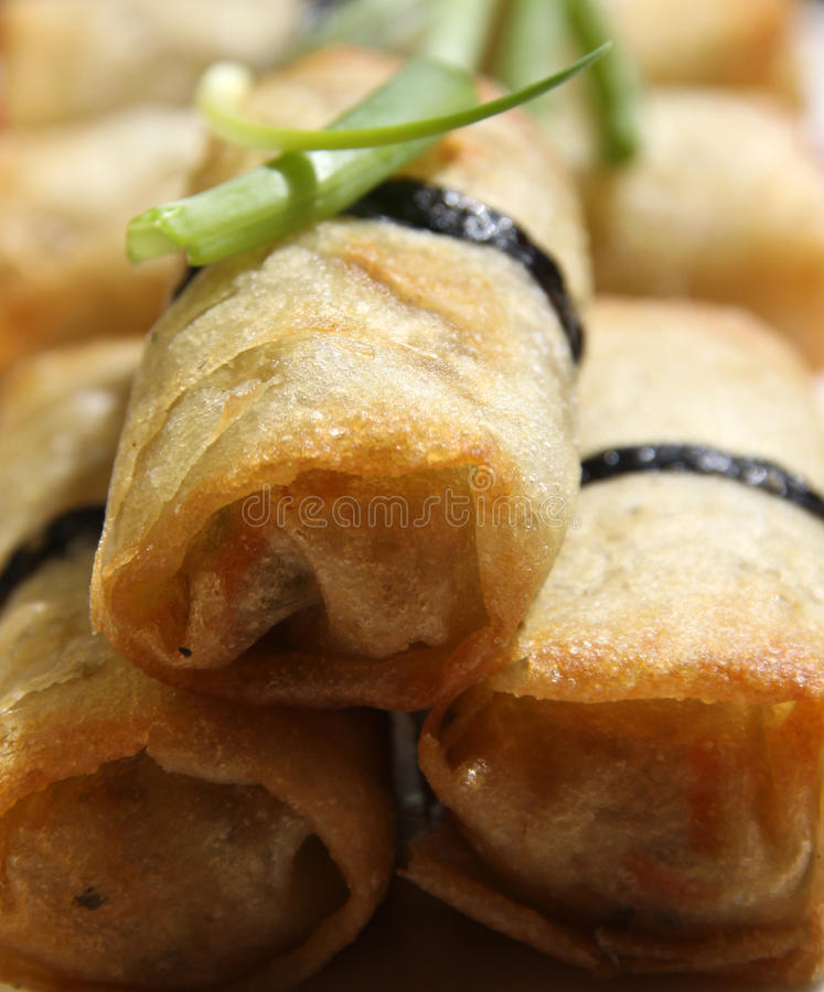 Free Spring Rolls Stock Images - 19298094
