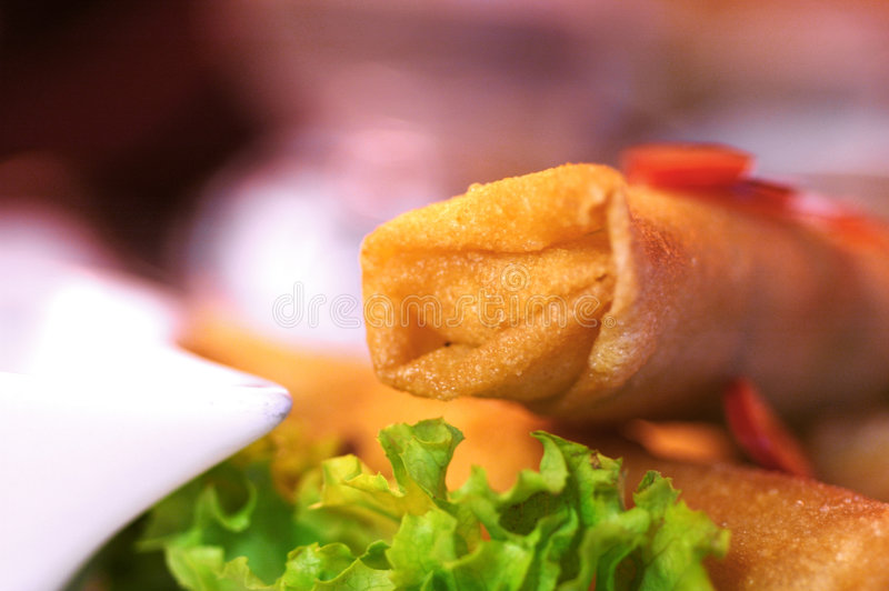 Download Spring rolls stock photo. Image of health, lunch, rolls - 509694