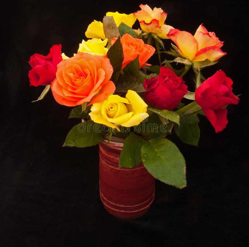 Spring roses on black royalty free stock photos
