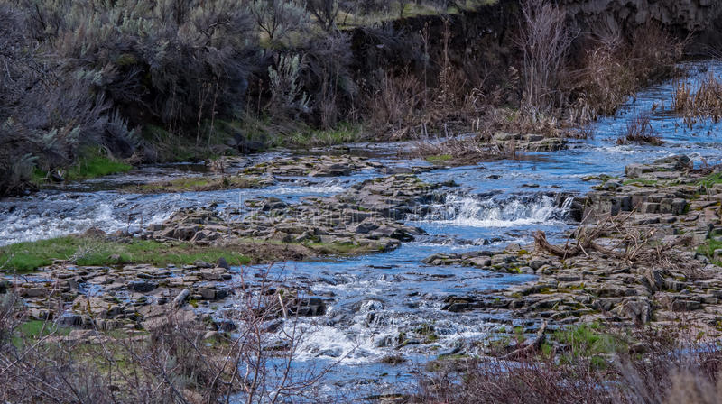 Spring Run Off Stream n the High Desert royalty free stock photo