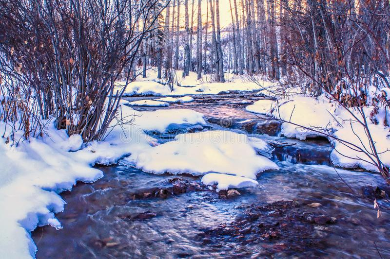 Spring run off in the winter time. Big Hill Springs Provincial Recreation Area, Alberta, Canada stock photography