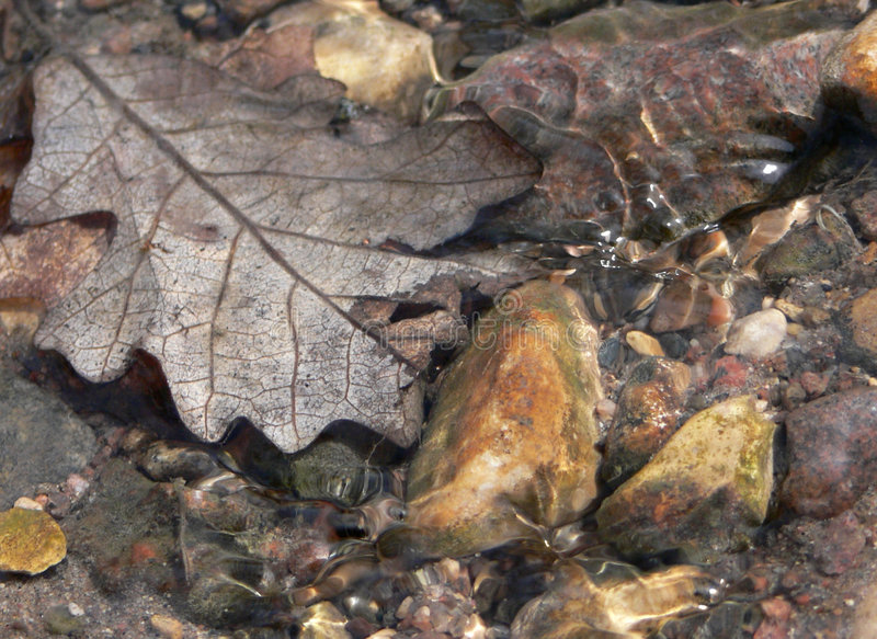 Spring Runoff. Close-up of water running over pebbles and a leaf stock image