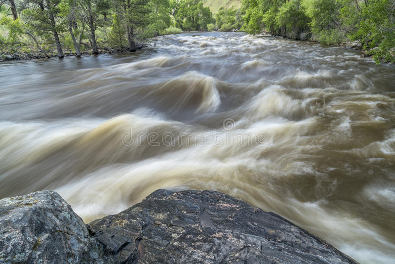 Spring runoff of Poudre River in Colorado stock image