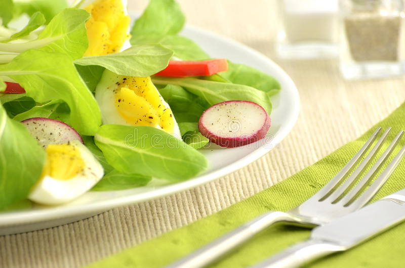 Download Spring salad stock photo. Image of fresh, nutritious - 23973286