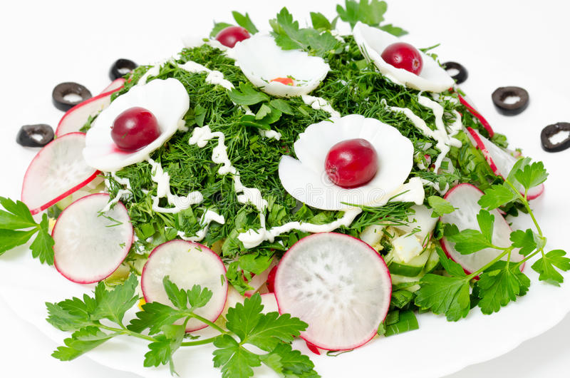 Spring salad. Vegetables with fresh radish and greenery royalty free stock image