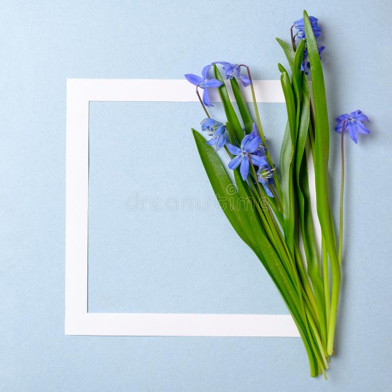 Spring sale background with beautiful flower and border frame. Template of banner, invitation card, poster, brochure, voucher,. Discount royalty free stock images