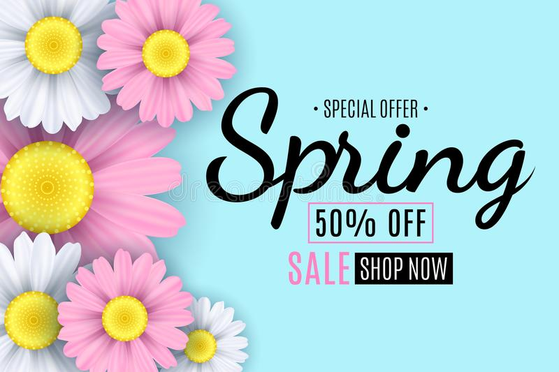 Spring sale banner. Square white frame. Pink and white flowers of chamomile on a light blue background. Seasonal flyer. Special of royalty free illustration