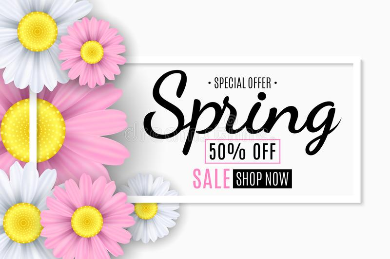 Spring sale banner. Square white frame. Pink and white flowers of chamomile. Seasonal flyer. Special offer. Vector illustration. EPS 10 stock illustration