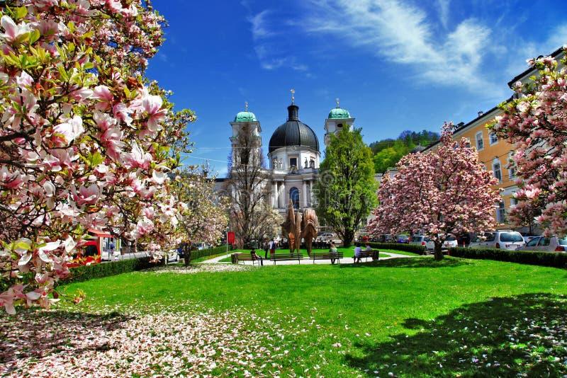 Spring in Salzburg. Blooming spring in Salzburg , Austria royalty free stock image