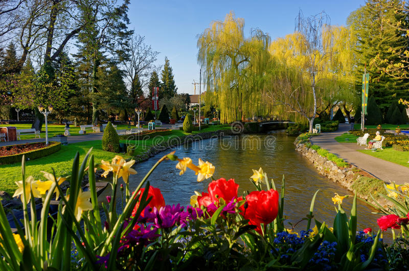 Spring scenery in park at river royalty free stock photography