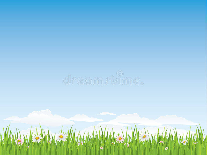 Spring seamless grass and flowers vector illustration