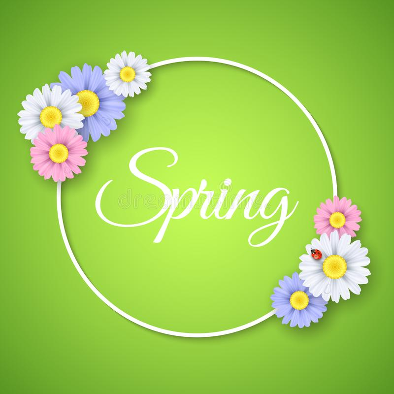 Spring seasonal banner. Paper round 3d frame. Multicolored realistic flowers on a green backdrop. Ladybug on a daisy. Vector vector illustration