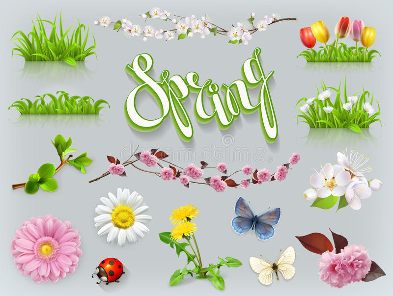 Spring set. Grass and flowers. vector icon vector illustration