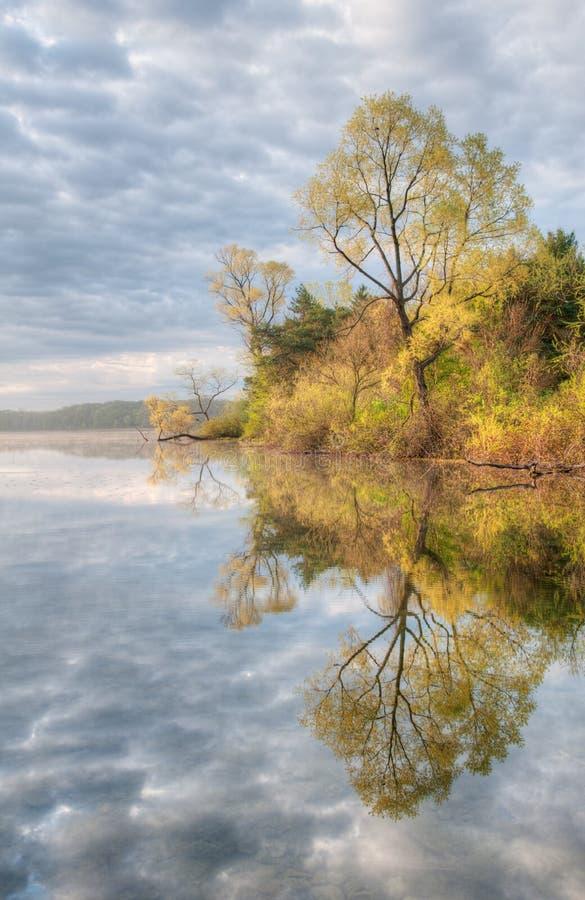 Download Spring Shoreline stock photo. Image of serene, spring - 16116384