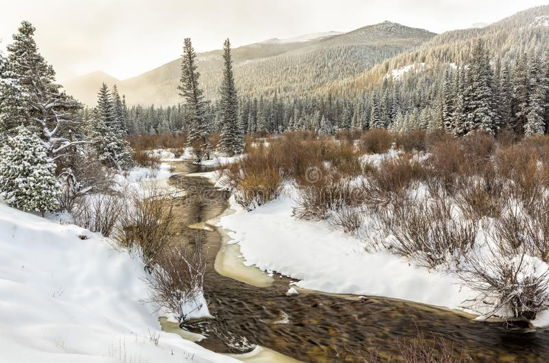 Spring Snow on Glacier Creek. Morning light on Esrtes Cone and Battle Mountain in fog above Glacier Creek after a late Spring snow in Rocky Mountain National royalty free stock photo