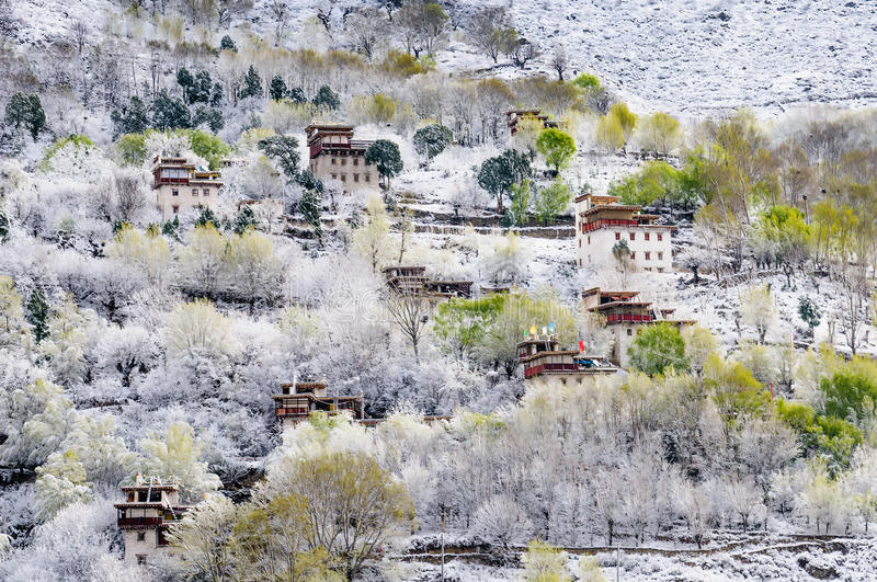 Spring snow of tibetan village stock images