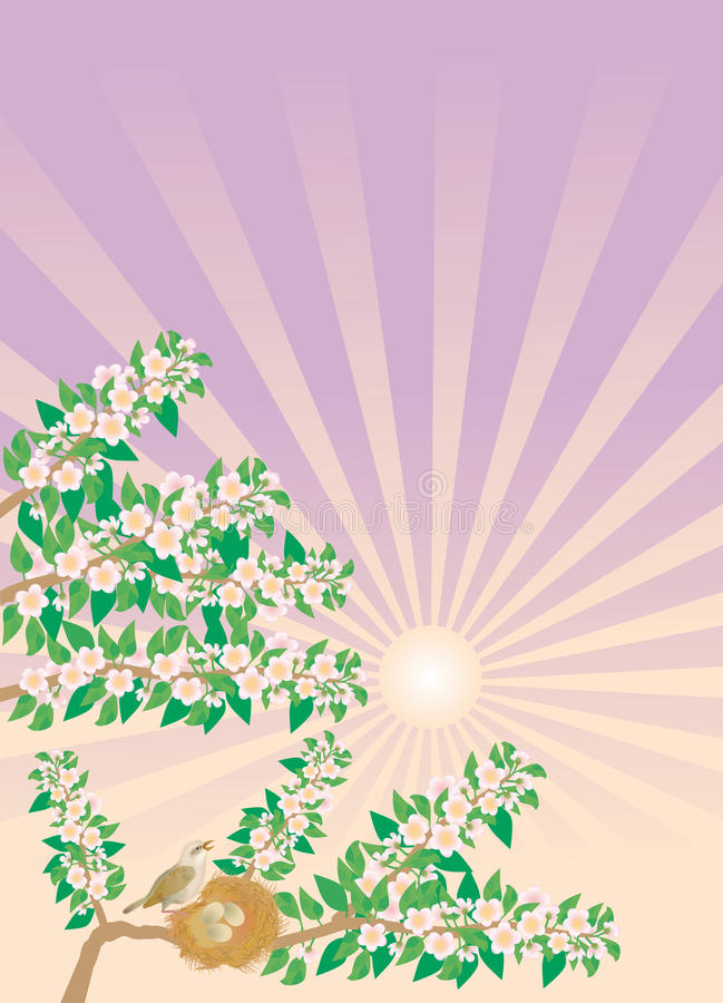 Download Spring song of nightingale stock vector. Image of gets - 9375949