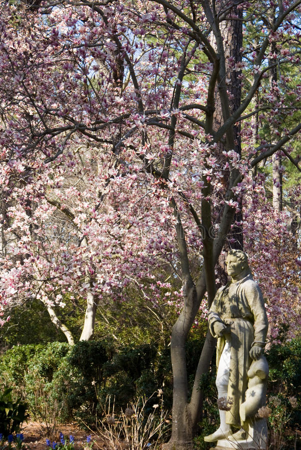 Download Spring Statues stock image. Image of tree, ezekiel, statues - 27651077
