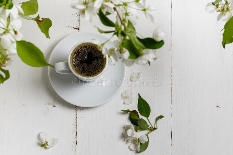 Spring still life. Cup of coffee with apple tree flowers and petals of flowers are on white cafe table outside in blooming garden royalty free stock image