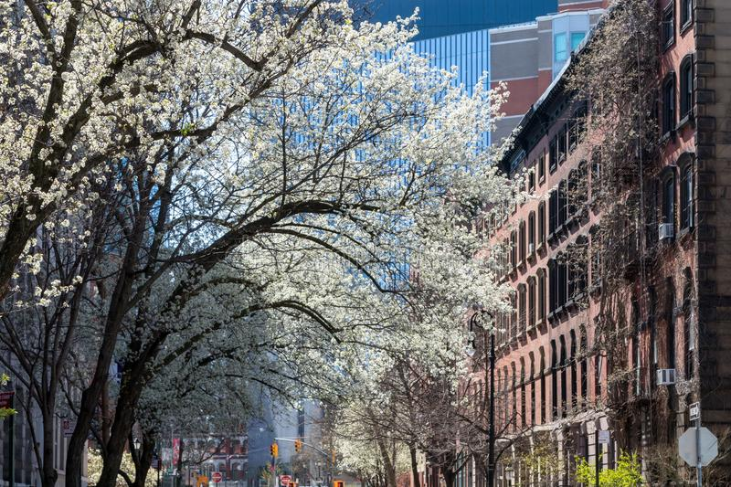 Spring street scene in the East Village of New York City stock photography