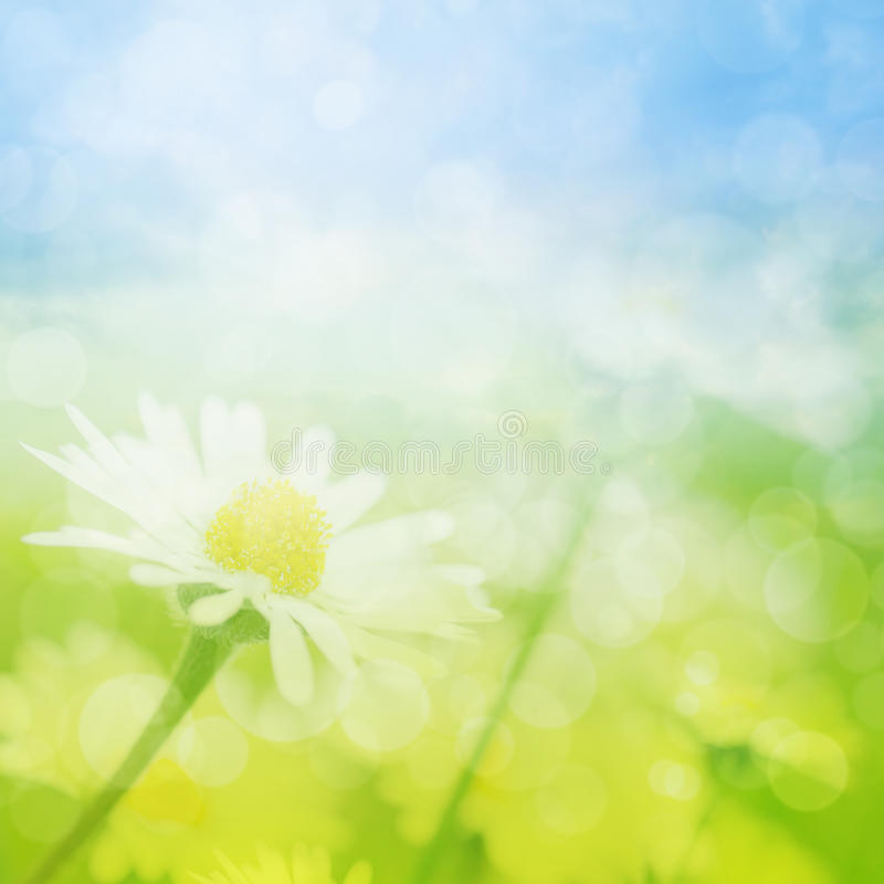 Download Spring Or Summer Abstract Background With Bokeh Stock Illustration