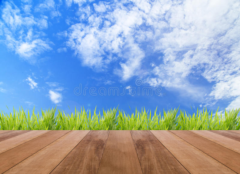 Spring or summer abstract nature background and wooden floor. Spring or summer abstract nature background stock photos
