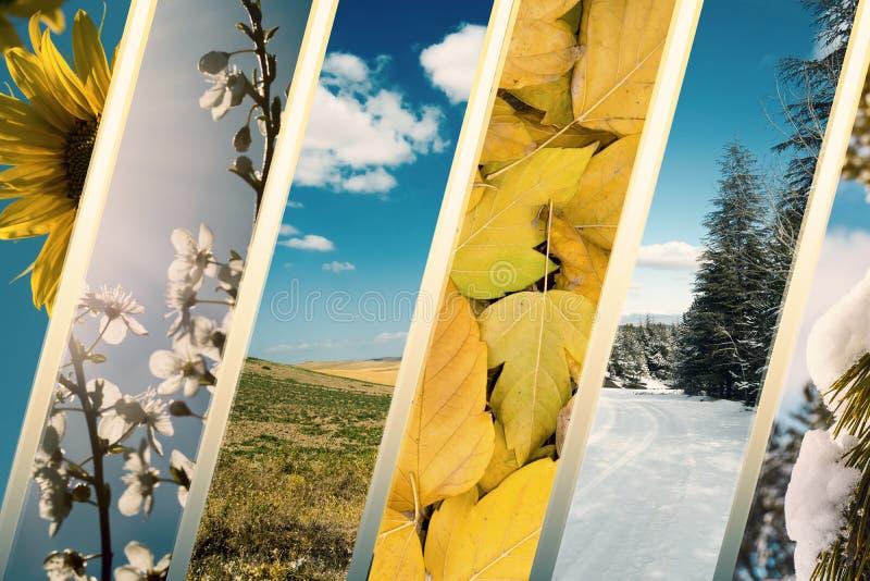 Spring summer autumn winter photos. Spring summer autumn winter season photos royalty free stock photos