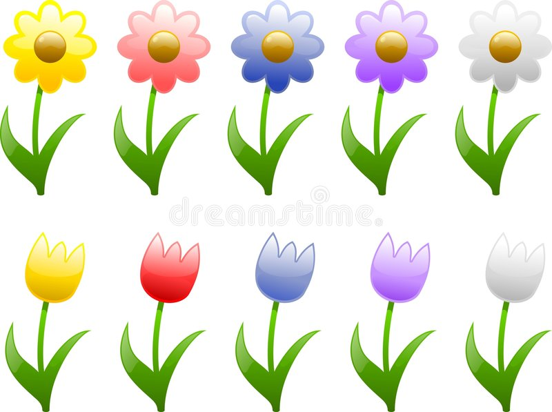 Spring and Summer Flowers royalty free illustration