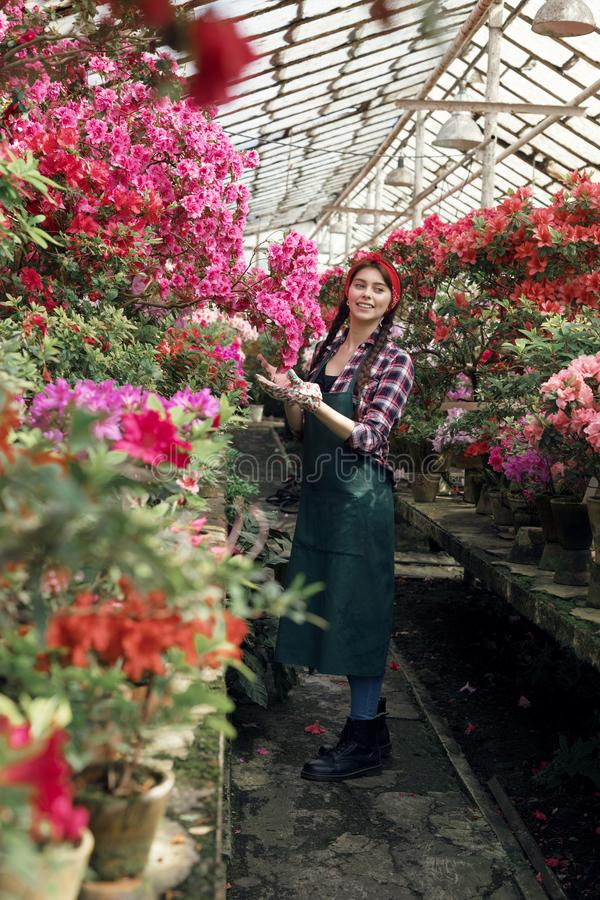Spring and summer flowers. Happy woman gardener in work clothes looking at the camera. Flower care and watering. Beautiful female florist royalty free stock images