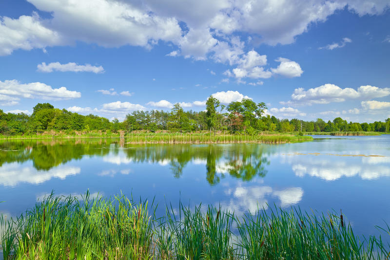 Spring summer landscape blue sky clouds river pond green trees. Countryside grass Poland royalty free stock photos