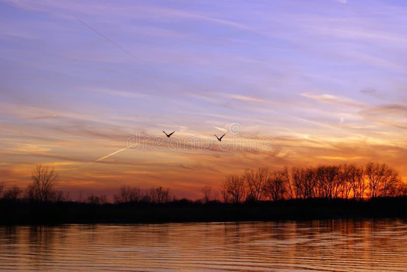 Spring Sunset in flight. stock photos