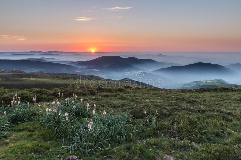 Spring sunset in the fog royalty free stock photo
