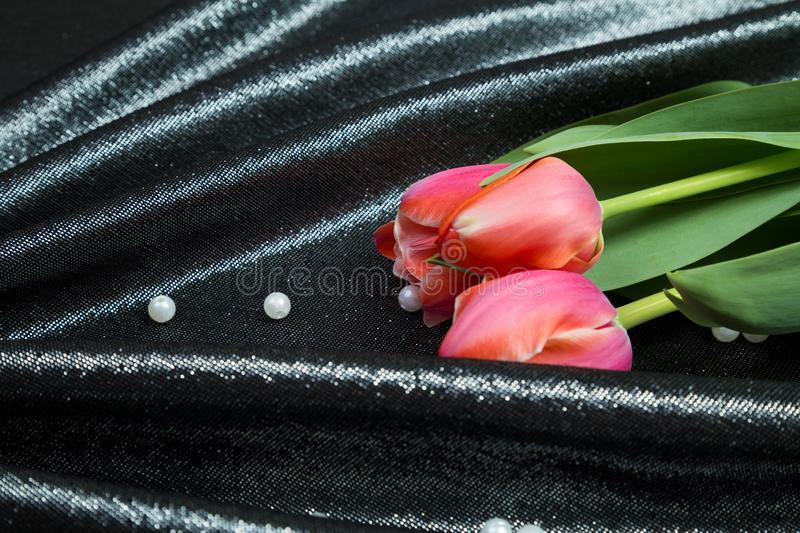 Spring tender pink tulips on brocade fabric stock images