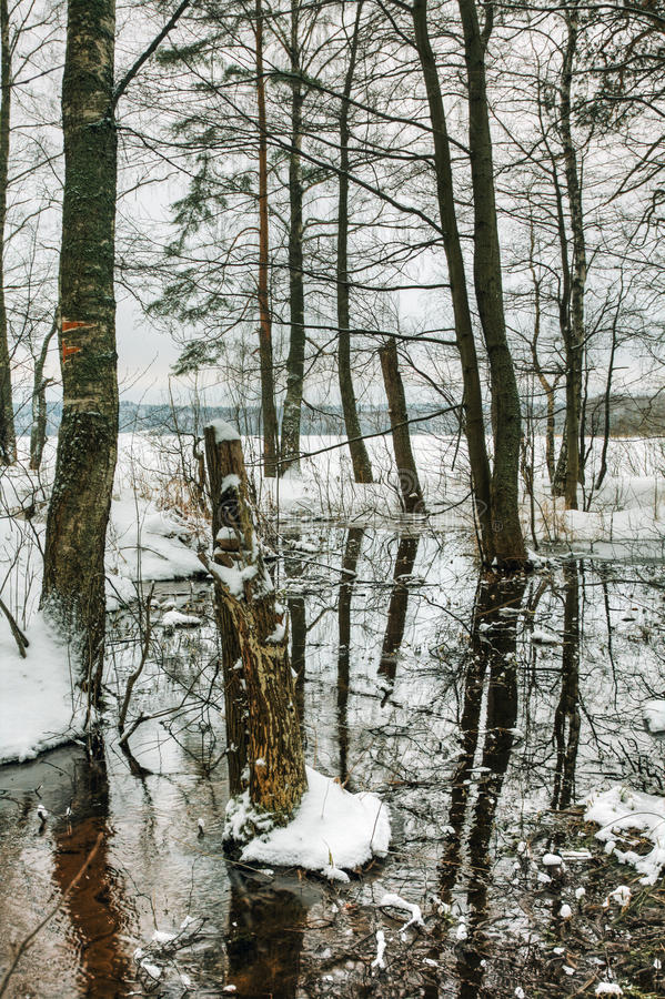 Download Spring thaw stock image. Image of russia, frosty, water - 22799881