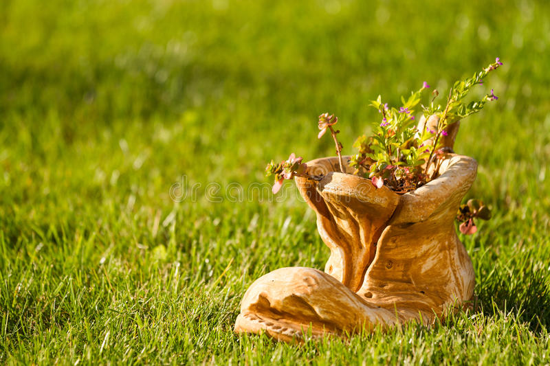 Download Spring theme stock image. Image of life, shoe, grass - 24139395