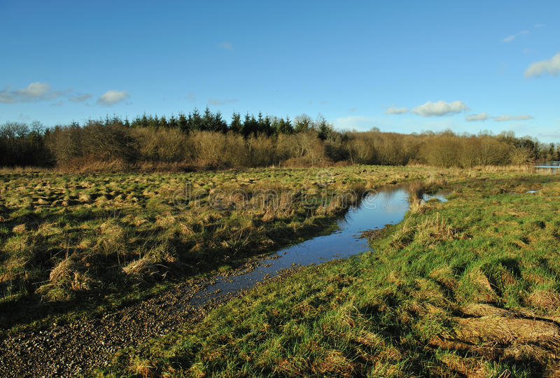 Download Spring time stock image. Image of land, brown, autumn - 18396243