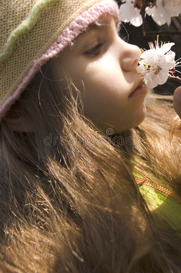 Spring time. Little girl with a blossoming branch of apricot in sunshine royalty free stock photography