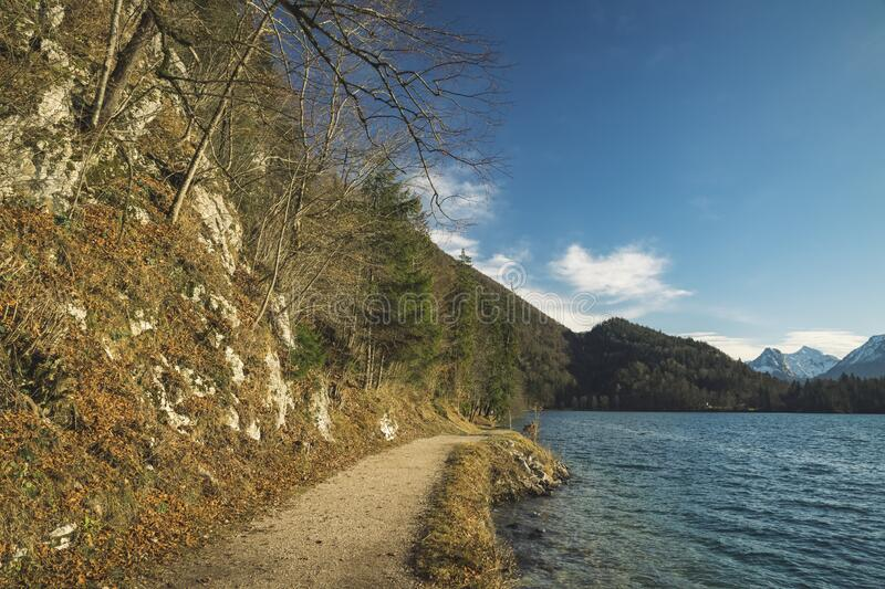 Spring time highland picturesque pine forest dirt walking trail along peaceful lake waters in Alps mountains scenery environment. Space royalty free stock image