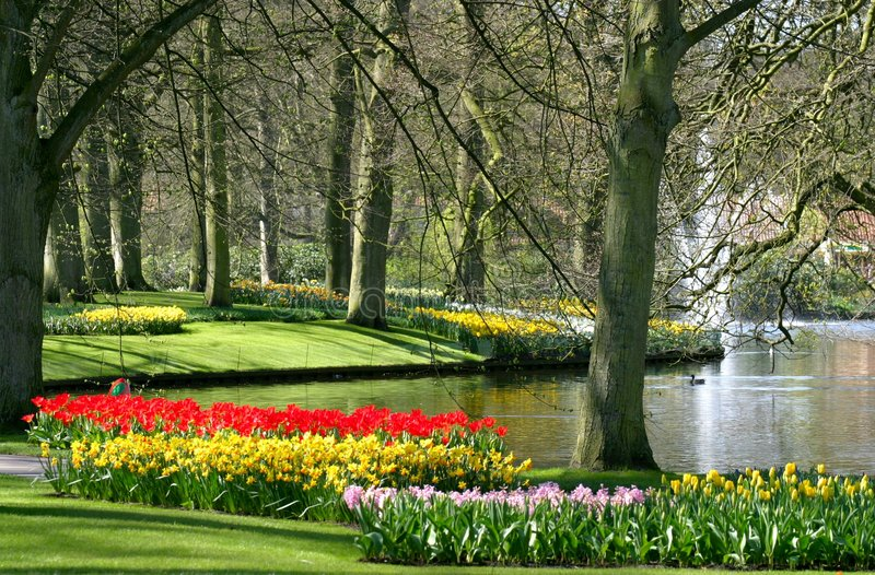 Spring time in park. Garden view with spring flowers