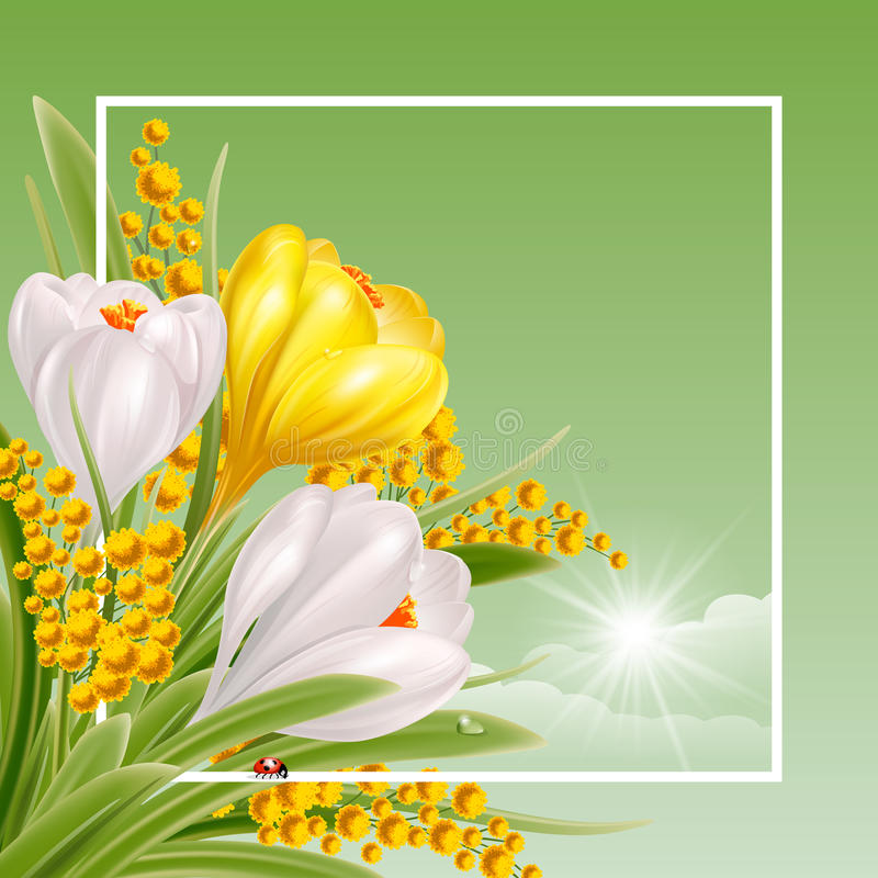 Spring Time vector illustration
