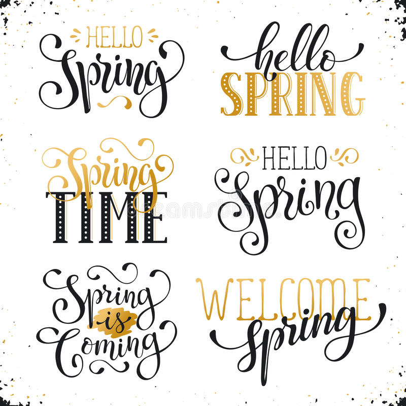 Spring time wording. Hand written Spring time phrases in white and gold. Greeting card text templates on blackboard. Hello Spring lettering in modern calligraphy vector illustration