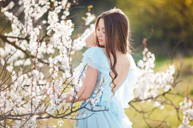 Spring touch. Happy beautiful young woman in blue dress enjoy fresh flowers and sun light in blossom park at sunset. Spring touch. Happy beautiful young woman royalty free stock photography
