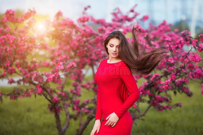 Spring touch. Happy beautiful young woman in red dress enjoy fresh pink flowers and sun light in blossom park at sunset. Happy beautiful young woman in spring royalty free stock image