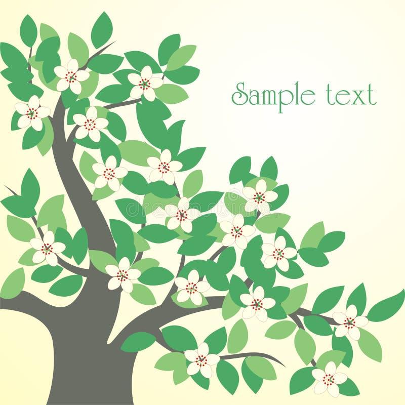 Free Spring Tree Stock Image - 13703311