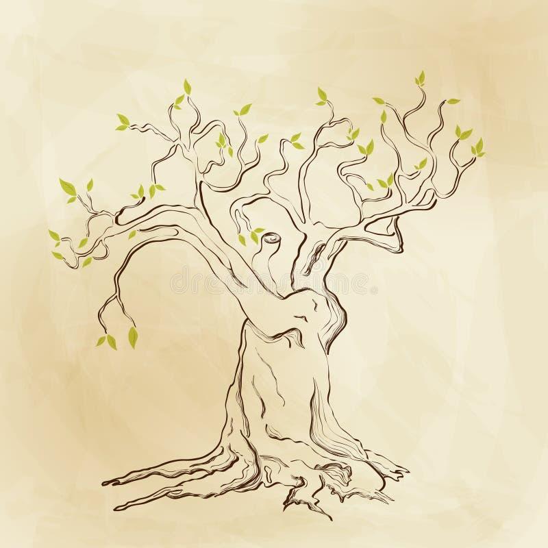 Spring tree royalty free illustration