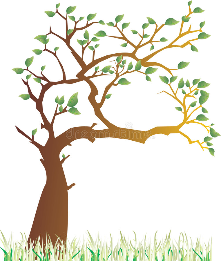 Spring tree. A vector illustration of tree in the spring