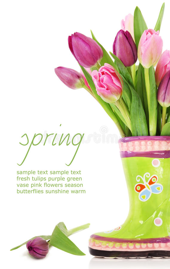 Spring tulip flowers in boots royalty free stock photo