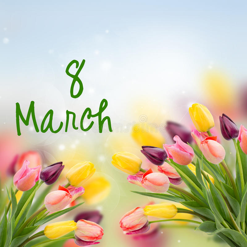 Spring tulips on blue. Spring multicolored tulips on blue bokeh background for 8 March international womens day stock image